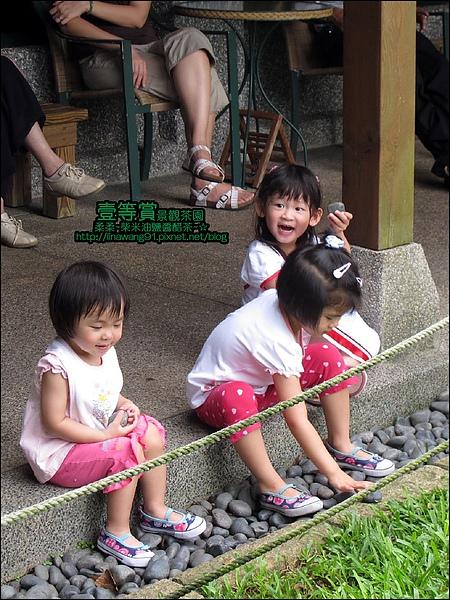 2010-0806-壹等賞景觀茶園 (24).jpg