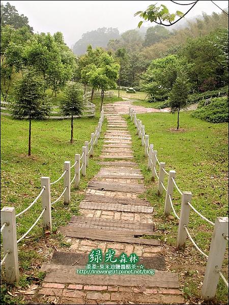2010-0324-桃園-綠光森林 (21).jpg