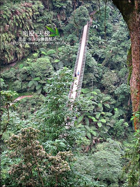 2010-0608-南投-天梯 (13).jpg