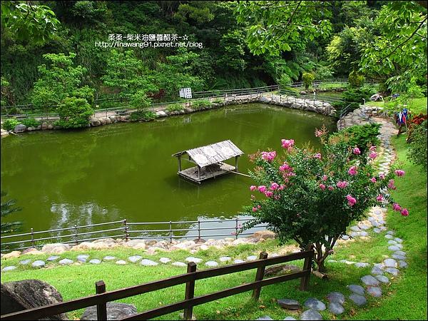 九芎湖-鴛鴦池-2010-0726 (3).jpg