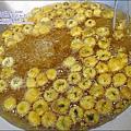 2010-1114-2010-銅鑼-杭菊芋頭節 (10).jpg