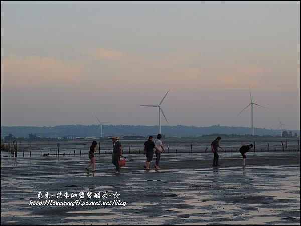 2010-0531-香山濕地-夕陽照 (25).jpg