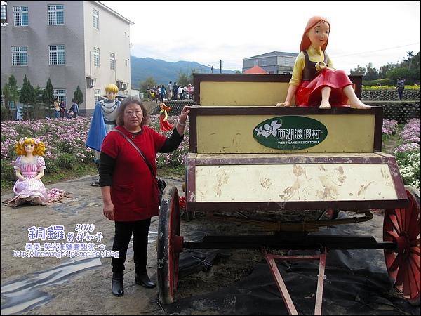 2010-1114-2010-銅鑼-杭菊芋頭節 (15).jpg