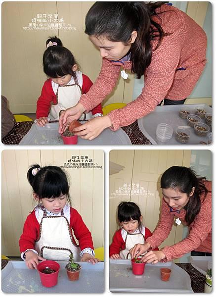 媽咪小太陽親子聚會-2011-0110-綠色-多肉植物 (27).jpg