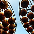 2010-1026~1102-新埔-衛味佳柿餅 (28).jpg