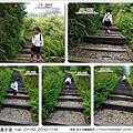 2010-1118  大湖-薑麻園-聖衡宮 (33).jpg