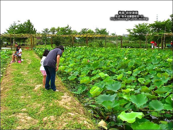 2010-0620-新屋蓮園 (35).jpg