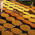 2010-1026~1102-新埔-衛味佳柿餅 (21).jpg