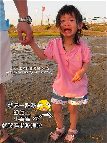 2010-0531-香山濕地-夕陽照 (5).jpg
