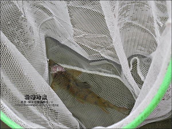 2010-0710-北埔冷泉 (16).jpg