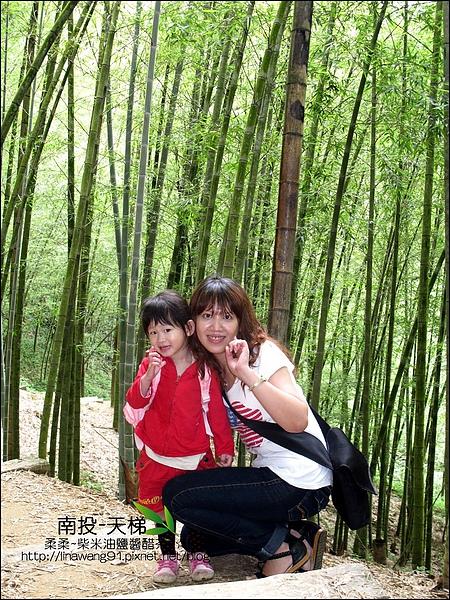 2010-0608-南投-天梯 (9).jpg