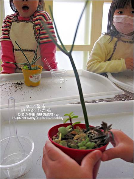媽咪小太陽親子聚會-2011-0110-綠色-多肉植物 (16).jpg