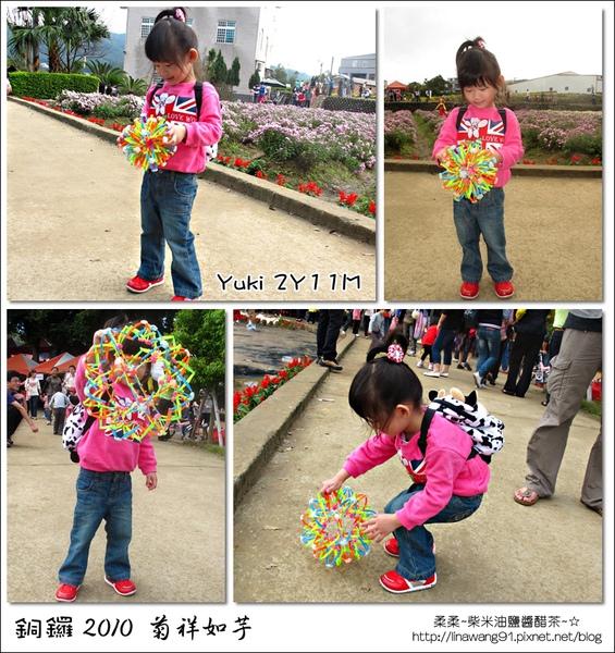 2010-1114-2010-銅鑼-杭菊芋頭節 (35).jpg