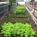 2011-0130-新竹-巷弄田園 (17).jpg