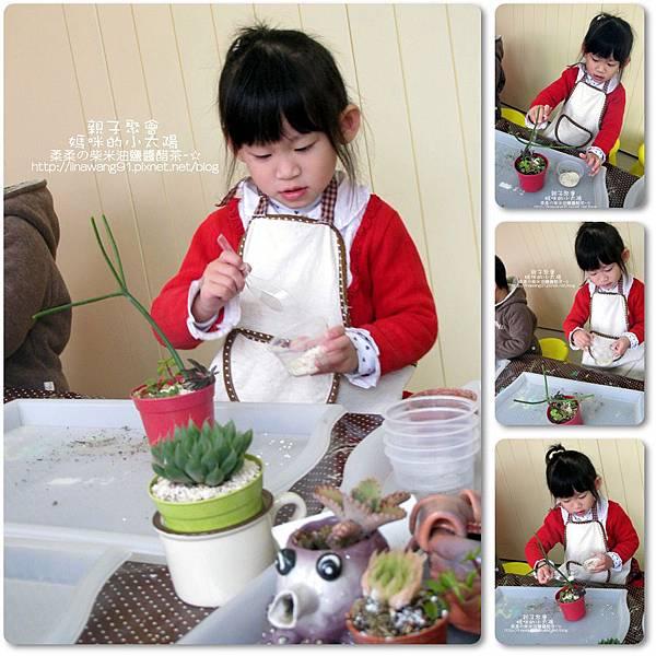 媽咪小太陽親子聚會-2011-0110-綠色-多肉植物 (31).jpg