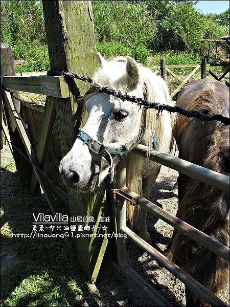 2010-0531-vilavilla山居印象農莊 (8).jpg