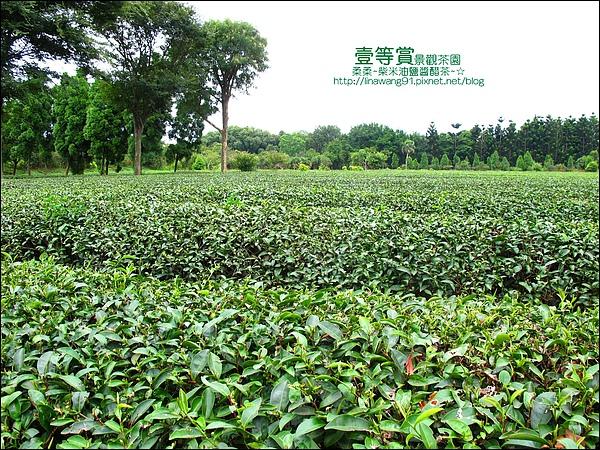 2010-0806-壹等賞景觀茶園 (30).jpg