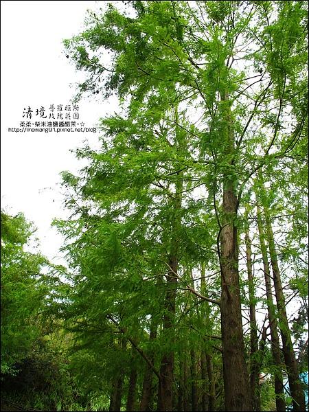 普羅旺斯玫瑰莊園清晨 -2010-0920 (22).jpg