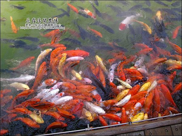 2010-0531-苗栗卓蘭-花露休閒農場 (44).jpg