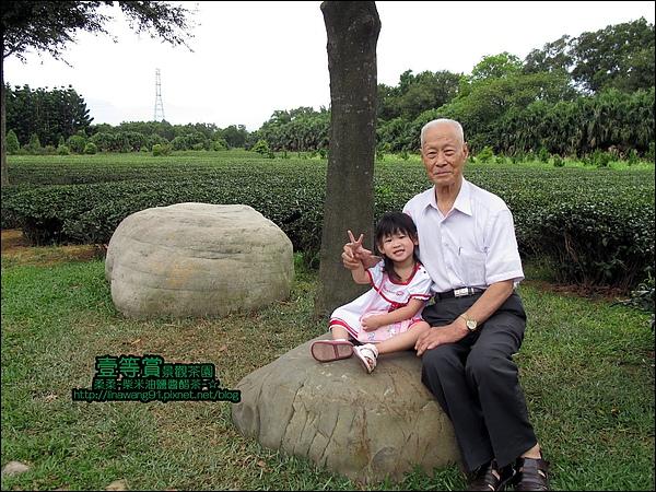 2010-0806-壹等賞景觀茶園 (27).jpg