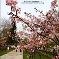 2011-0223-新竹公園-賞櫻花 (22).jpg