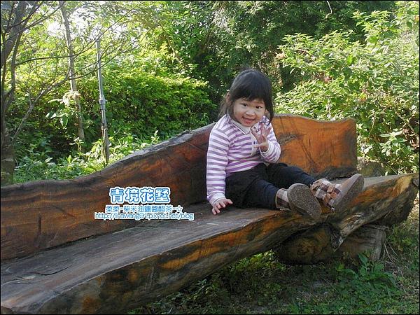 關西-青境花墅 2010-0115 (21).jpg