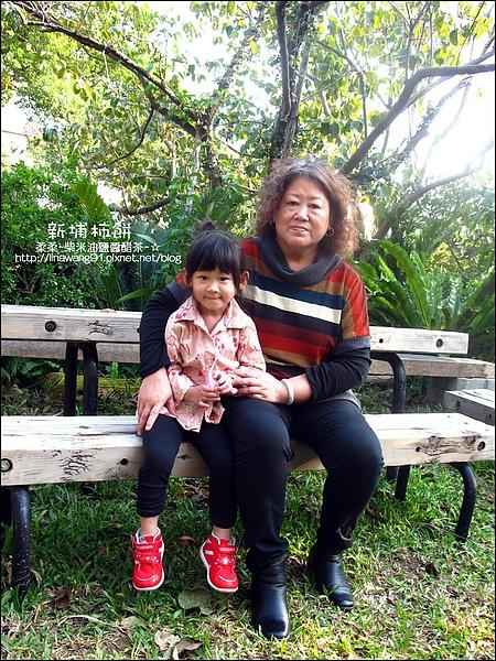2010-1026~1102-新埔-金漢柿餅 (31).jpg