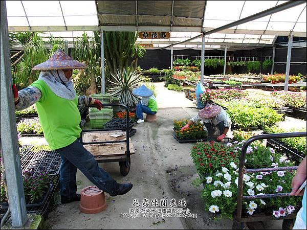 2010-0531-苗栗卓蘭-花露休閒農場 (12).jpg