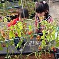 2011-0226-灣潭玫瑰草莓園 (37).jpg