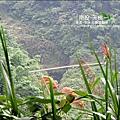 2010-0608-南投-天梯 (11).jpg