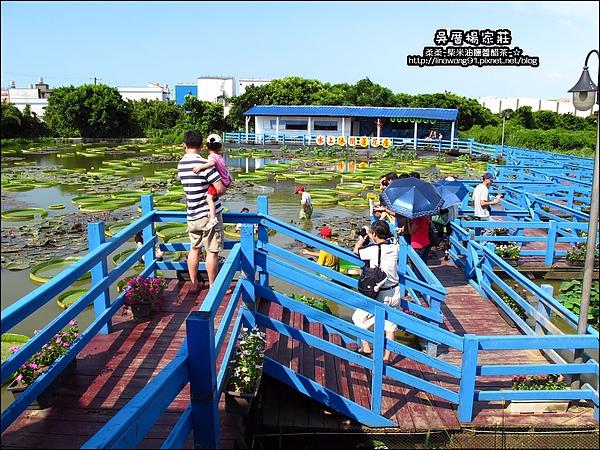 吳厝楊家莊-2010-0815 (2).jpg