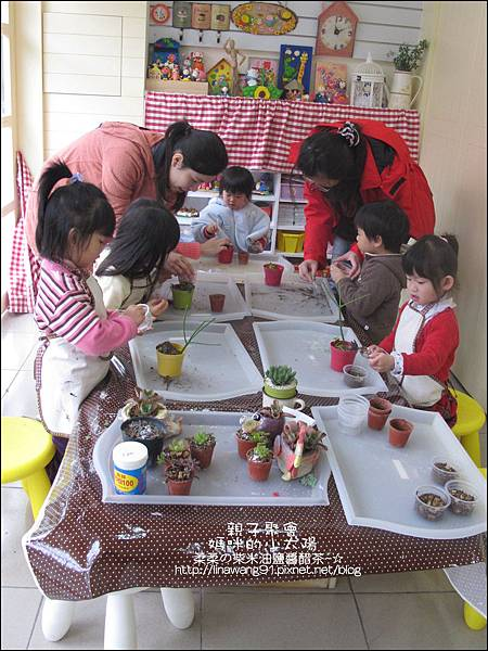 媽咪小太陽親子聚會-2011-0110-綠色-多肉植物 (13).jpg