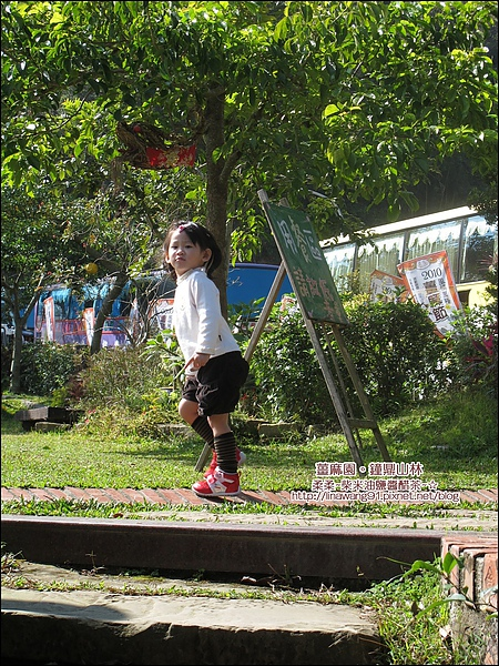 2010-1118-大湖-薑麻園-鐘鼎山林 (16).jpg