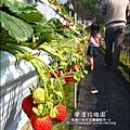 2011-0226-灣潭玫瑰草莓園 (7).jpg