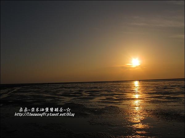 2010-0531-香山濕地-夕陽照 (11).jpg