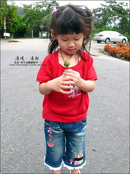 2010-0920-南投清境 (20).jpg