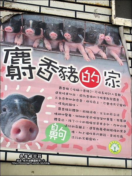 吳厝楊家莊-2010-0815 (53).jpg