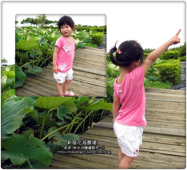 2010-0620-新屋花海農場 (25).jpg