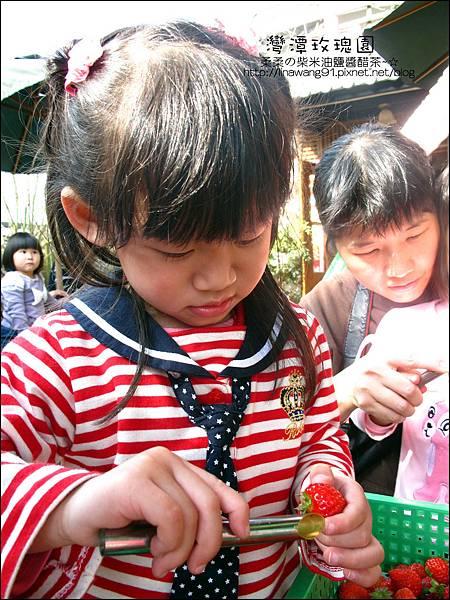 2011-0226-灣潭玫瑰草莓園 (21).jpg