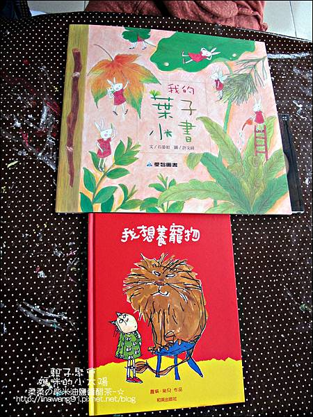 媽咪小太陽親子聚會-2011-0110-綠色-多肉植物.jpg
