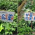 2011-0320-老樹根魔法木工坊 (76).jpg
