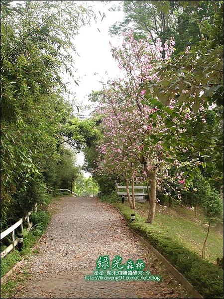 2010-0324-桃園-綠光森林 (22).jpg