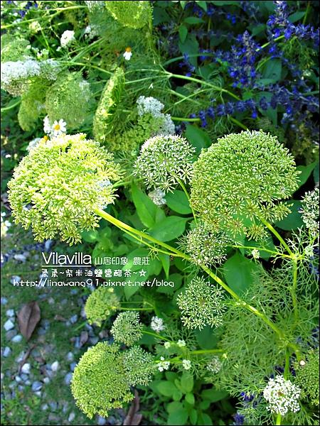 2010-0531-vilavilla山居印象農莊 (10).jpg