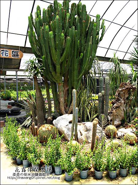 2010-0531-苗栗卓蘭-花露休閒農場 (3).jpg