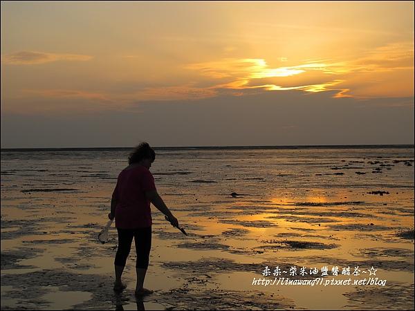 2010-0531-香山濕地-夕陽照 (26).jpg