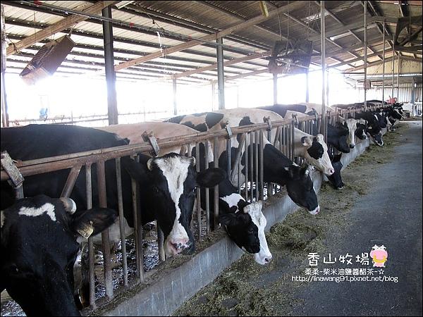 2010-0908-香山牧場 (20).jpg