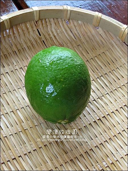 2011-0226-灣潭玫瑰草莓園 (40).jpg