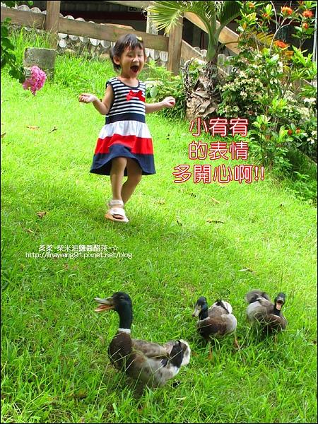 九芎湖-鴛鴦池-2010-0726 (14).jpg