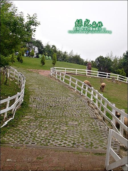 2010-0324-桃園-綠光森林 (18).jpg