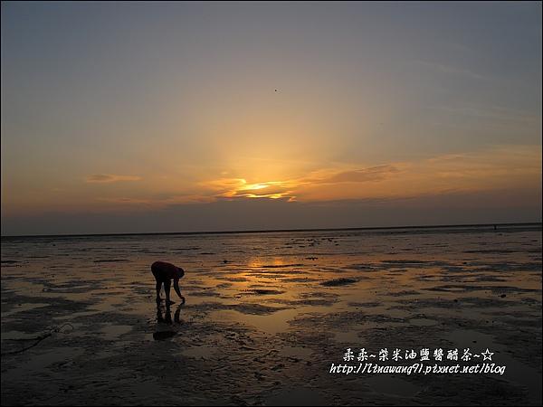 2010-0531-香山濕地-夕陽照 (27).jpg